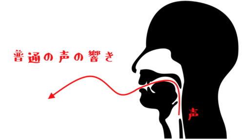 鼻腔共鳴していない声イメージ